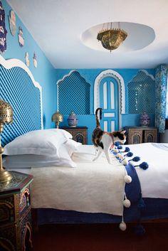 Color me spa exotic style. This proves blue can be warm.  Blue and Tangier. Moroccan design.