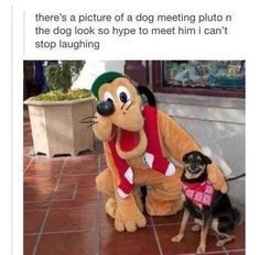 When you meet your idol