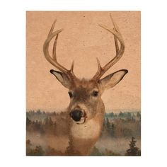 Whitetail Deer Double Exposure Photo Cork Paper