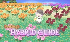 If you want to grow a lot of hybrid flowers I have the solution for you!