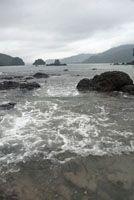A lo largo de la vertiente de la cordillera Occidental hacia el Pacífico, predomina la alta humedad, desde las cálidas costas hasta las fría...