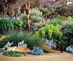 Landscape designer Matt Leacy of Landart Landcapes, shares his top plant picks for creating a native Australian garden in a coastal environment. garden landscaping How To Create A Native Coastal Garden Australian Garden Design, Australian Native Garden, Australian Plants, Seaside Garden, Coastal Gardens, Tropical Garden, Riverside Garden, Garden Landscape Design, Gardens