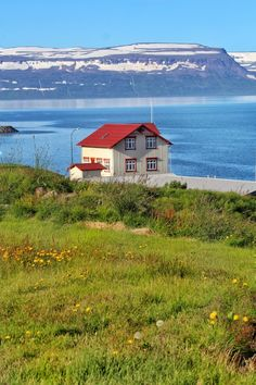 Small town in the Westfjords of Iceland :)