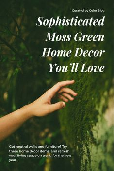 Don't want to commit to a paint color? Moss green home decor items could make a new statement in your home. Wall Mounted Headboards, Upholstered Wall Panels, Cal King Size, Neutral Walls, Color Meanings, Green Home Decor, Paint Brands, Words To Describe, Home Decor Items