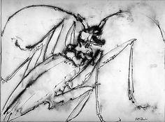 Insect Artist:Kenneth Callahan (American, Spokane, Washington Seattle, Washington) Medium:Ink on paper Dimensions:H. inches x cm. Modern Art, Contemporary Art, Art Academy, Paper Dimensions, Postmodernism, Mystic, Creepy, Insects, Spokane Washington