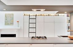 Architectural designer Chris Greenawalt's Boston kitchen renovation includes a striking approach to spice storage: a back-lit shelf accessed by a library ladder.  Photo by Kate McElwee.