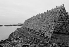 cod drying house structure - Lofoten islands - Norway