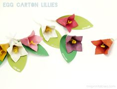 Recycle Crafts for Kids | Egg Carton Lillies | Mr Printables
