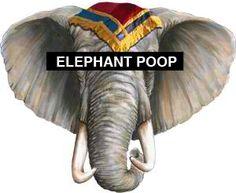 Elephant Poop.