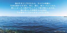 """""""辛い時、悲しい時、私たちが海を見に出かけるのは、遠い昔、そこに住んでいたからかもしれないね"""" 上記の言葉は、森や山にも当てはまります(有名な喩えです) 人間は、自分が何所で生きるべきか、何によって生かされているか、 誰にも教えられなくても、本能で知っているのかもしれません。 どんな人(生き物)にも、どこかしら、帰る場所が必要です。 帰る場所があるから、人は何処までも遠くに行くことができる。 ゆえに、我が主人公も海から離れません。 人生をやり直す時も、思索する時も、常に海と共にあります。そうした魂のふるさとを持つことが、 長い人生には意外と大事なのです。"""
