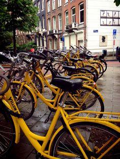 Yellow Bike @Amsterdam