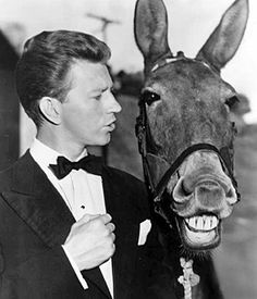 Francis The Talking Mule and Actor Donald OConnor - Loves these old movies