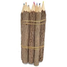 "Let your art ""branch out"" with these natural bark Twig Colored Pencils!"
