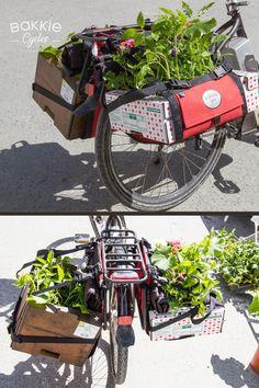 Transport de petits plants fragiles pour le potager ! #velocargo #potager #bikelife #dansmesbakkies #bakkiecycles #remorquevelo #madeinfrance Velo Cargo, Transport, Motorcycle, Bike, Fun, Veils, Molle Pouches, Baskets, Backyard Farming