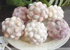These scented Decorative Seashell Balls make a stylish home accent with seaside style. Iridescent glitter adds sparkle and shine! Seashell Crafts, Beach Crafts, Cute Crafts, Creative Crafts, Decor Crafts, Mosaic Diy, Mosaic Garden, Mosaic Ideas, Garden Art