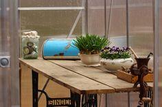 Ruusunmekko garden's greenhouse 'Kyökki' in April 2015