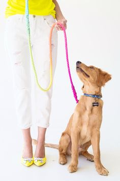 DIY Technicolor Dog Leash #pets #dog #gifts #make #kids #craft #DIY