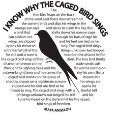 i know why the caged bird sings essay prompts For the caged bird sings of freedom the free bird thinks of another breeze and the trade winds soft through the sighing trees.