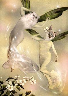 Kelpie & Fae - Vintage Cat 5x7 Print - Anthropomorphic - Altered Photo - Fairies - Whimsical - Photo Collage - GIft idea - Fantasy Art
