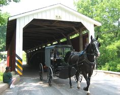 Lancaster County Covered Bridges | ... galleries >> Amish,Lancaster County,PA, > Covered Bridge Amish Buggy