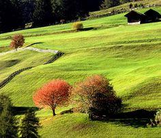 early autumn at Italian Alps