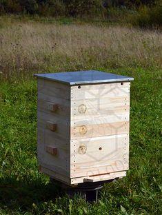 Наше пчеловодство