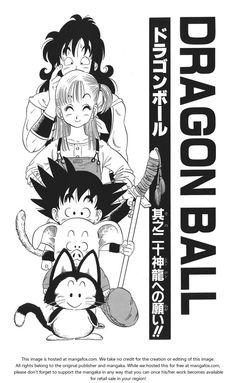 Dragon Ball 20: o desejo de o dragão !!  em MangaFox.me