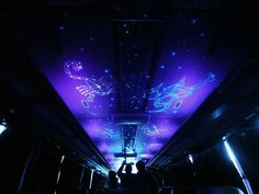This is the ceiling of a tour bus illuminated with a combination of effects to look like the night sky- fiber optic stars light the ceiling. Ceiling Effect, Sky Ceiling, Starry Night Sky, Night Skies, Fiber Optic, Tours, House Ideas, Trunks, Bulbs