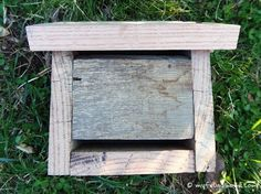 How to Build a Ladybug House next to your fruit trees because they eat aphids and other pests.