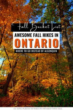 Are you looking for Ontario fall hikes? Here are over 10 AWESOME fall hikes in Ontario to add to your fall bucket list + great alternatives to Algonquin Park! I where to hike in Ontario I places to hike in Ontario I Ontario travel I Ontario hiking I Ontario trails I fall in Ontario I where to go in Ontario in fall I autumn in Ontario I fall colours in Ontario I Ontario fall colours hikes I hiking in Canada in fall I hike Ontario in the fall I autumn hikes in Ontario I #Ontario #hiking…