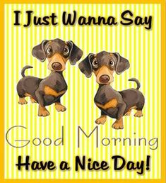 I Just Wanna Say Good Morning Have A Nice Day morning good morning morning quotes good morning quotes morning quote good morning quote cute good morning quotes Good Morning Puppy, Cute Good Morning Quotes, Good Day Quotes, Morning Inspirational Quotes, Good Morning Picture, Good Morning Messages, Good Morning Good Night, Good Morning Wishes, Good Morning Images