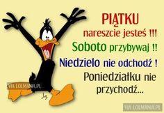 Memes, Haha, Humor, Funny, Quotes, Posters, Tattoos, Jokes, Good Morning