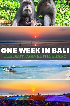 ONE WEEK IN BALI:The Best Travel Itinerary!