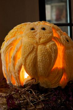 Halloween Owl Carved Pumpkin. The coolest pumpkin I have ever seen! Pinned by www.myowlbarn.com