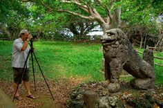 10 tips for buying a tripod
