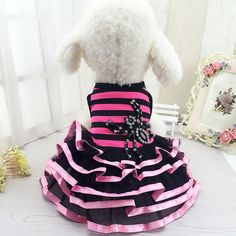 dog dresses for dogs Striped Spider Skirt Cat Princess Lace Dresses Clothes Apparel Chihuahua Costume For Small Dog #Affiliate
