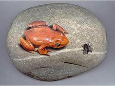 Realistic Frog and Fly Painted on a Rock