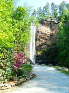 Pathway to Toccoa Falls ~ Stephens County, Georgia