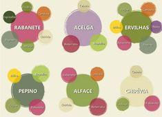 infografico_legumes5_sossolteiros