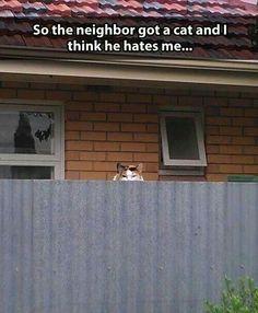He's watching you........