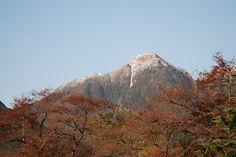 菰野町大羽根園地区 雪化粧の御在所 平成24年11月16日早朝撮影  15日が初冠雪