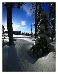 Mt. Washington, British Columbia, Canada Copyright: Paul Enns (PJE)