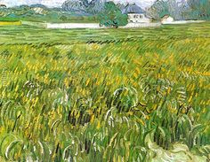 Wheat Field at Auvers with White House Vincent Van Gogh Reproduction | 1st Art Gallery