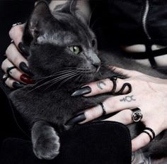 Sub Zero Gothic jewelry black cat