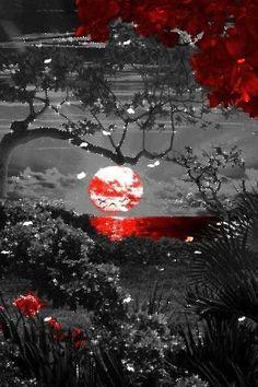 mybelobru: Beautiful Sunset Animation.
