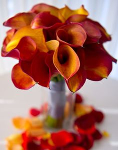 WeddingChannel Galleries: Orange Calla Lily Bouquet  Don't really want a Fall wedding, but these are pretty...maybe September or October  would be nice.