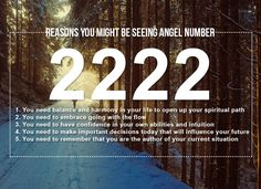 Numerology, Secret book, Affirmations, Law of attraction, manifestation 555 Angel Numbers, Angel Number Meanings, Spiritual Messages, Spiritual Path, Spiritual Meaning, Numerology Numbers, Numerology Chart, This Is Your Life, Psychic Development