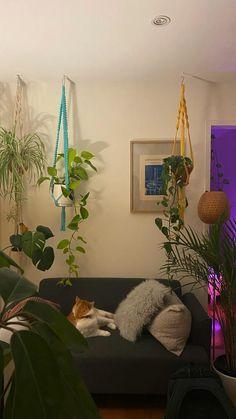 Room Design Bedroom, Room Ideas Bedroom, Home Room Design, Bedroom Decor, Bedroom Inspo, My New Room, My Room, Bedroom Plants, Plant Rooms