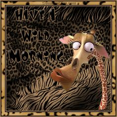 Giraffe wild morning - Click to play