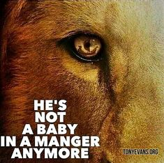 He's not a baby in a manger anymore. - Tony Evans #hopewords #jesus